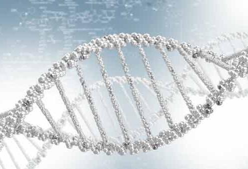 Hvad er udvikling - DNA spiral - SOULANDBODY