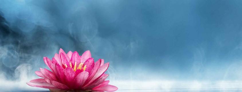 Spirituel udviklingsgruppe 2015 - SOULANDBODY